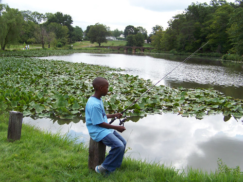 Maryland DNR to Stock Local Ponds With Channel Catfish