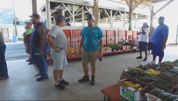 Honoring Delmarva Farmers: Little Farmer Evan's Produce