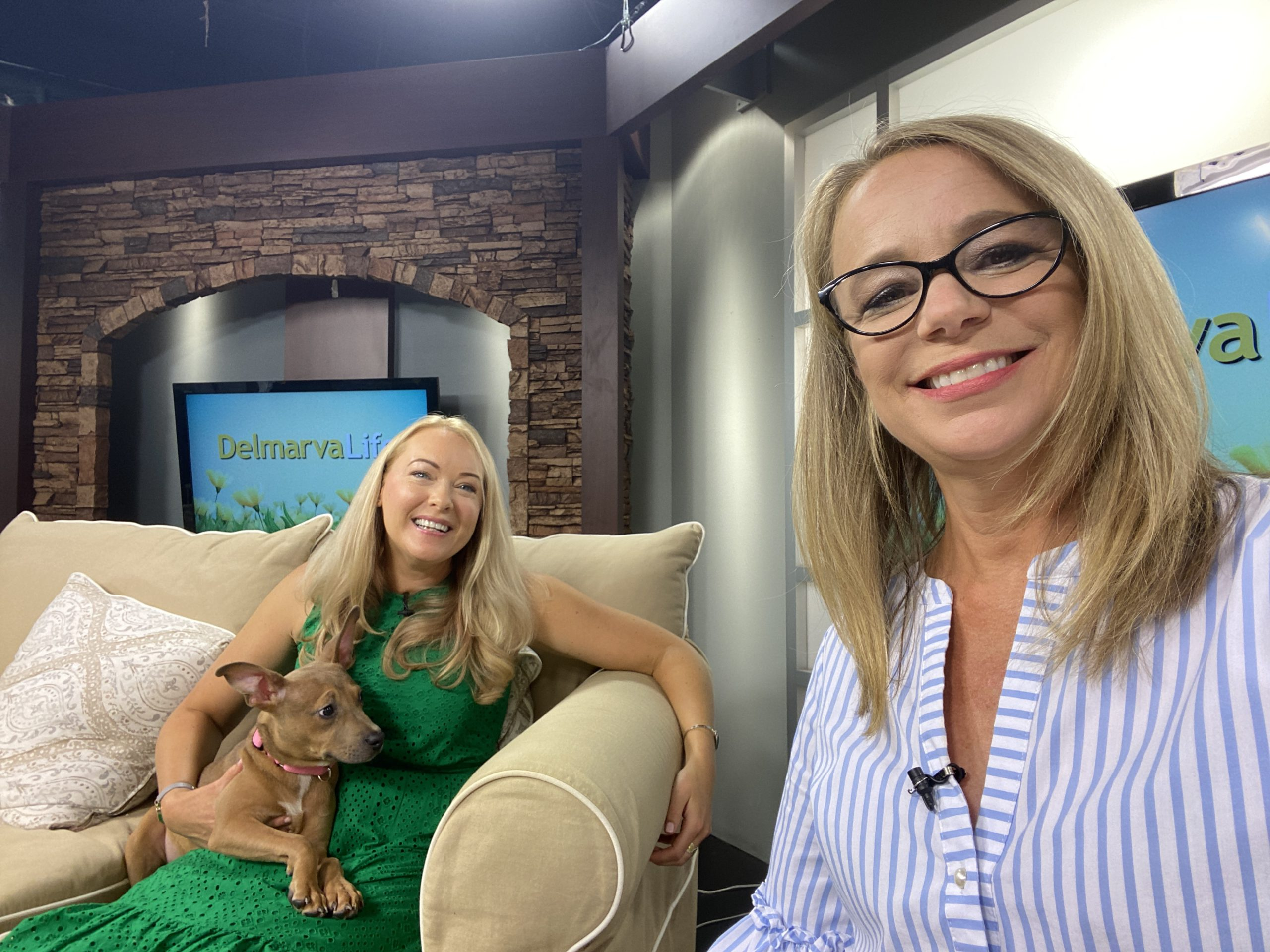 """We Talk to Cheryl Crowe, Founder & Organizer of """"Run For the Paws 5k"""" About The Event"""