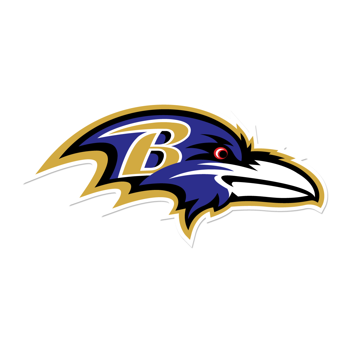 Raven Youth Football Grant Application Available