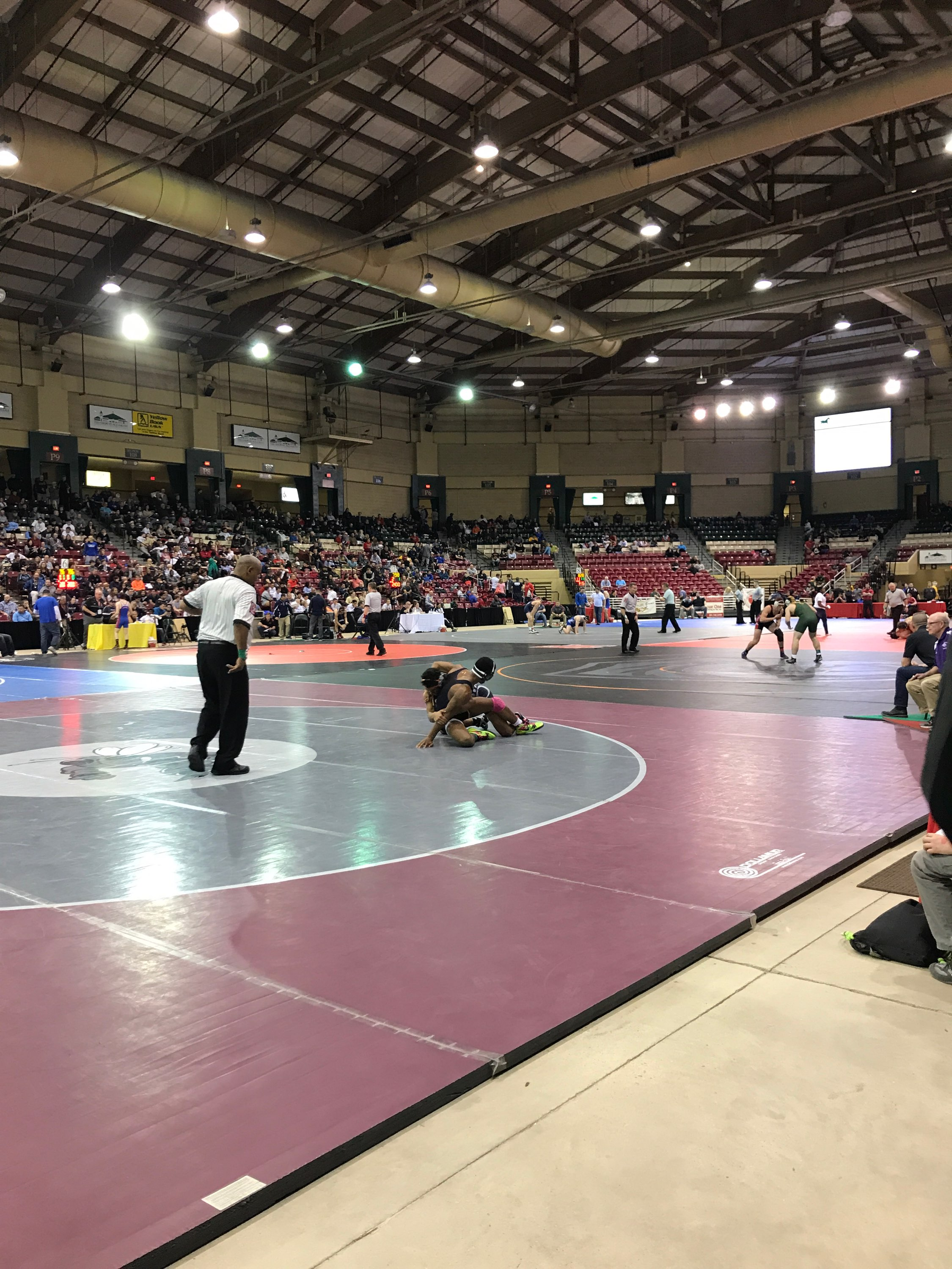Fifteen Bayside Wrestlers Place at the State Tournament