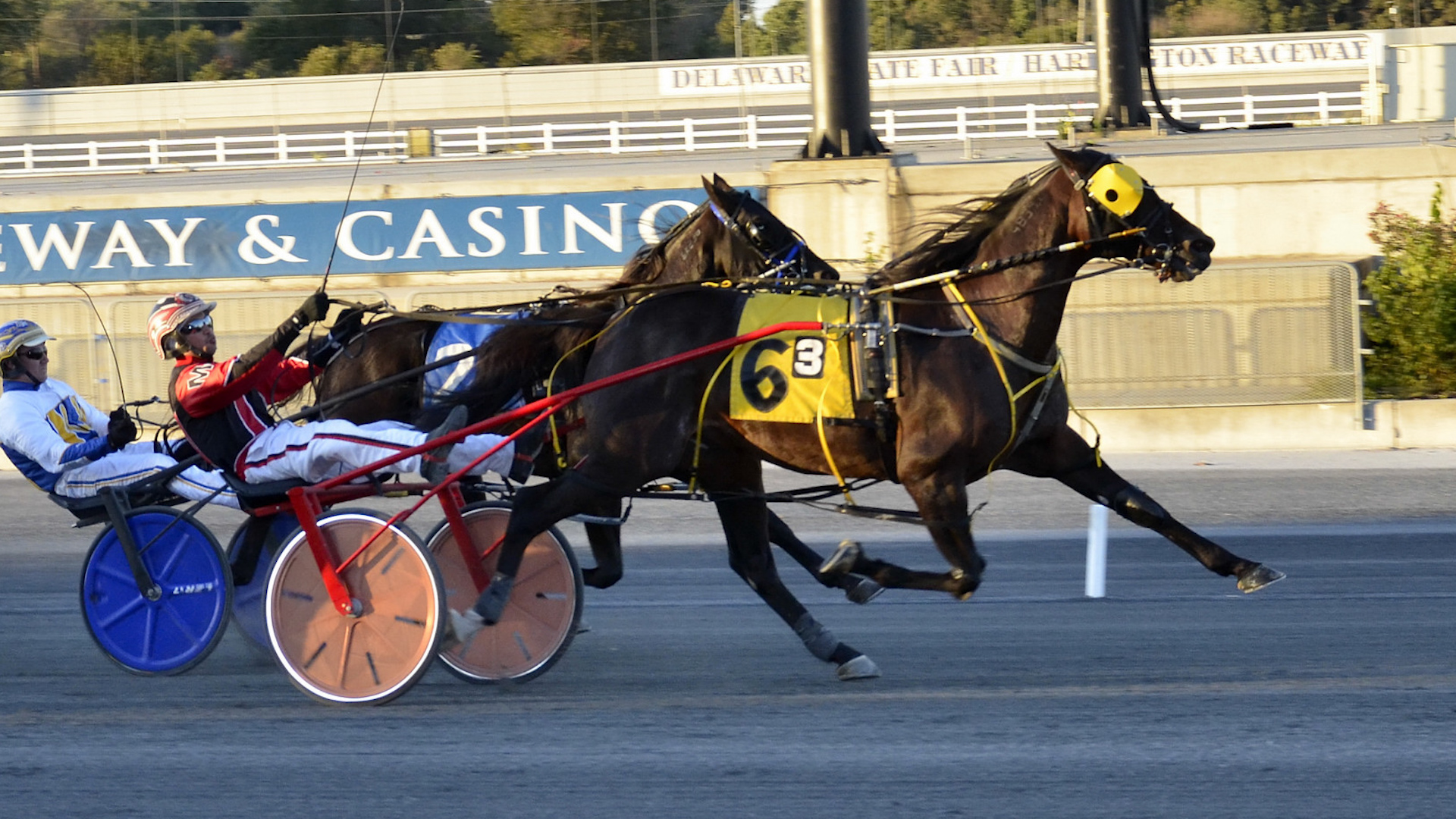 Foiled Again stops by Harrington for the last time