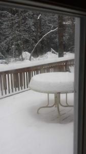 MARDELA SNOW